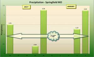Daily Rain in Springfield, 7/26-8/4